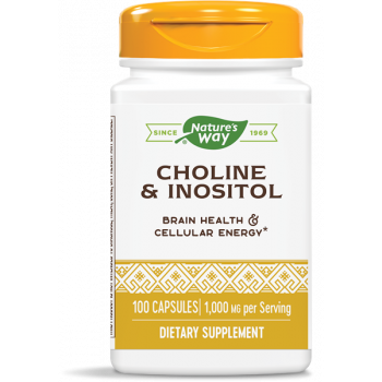Choline and Inositol 500 мг 100 капсули | Nature's Way