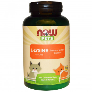 PET L-Lysine Powder (cats) 170 gr I Now Foods